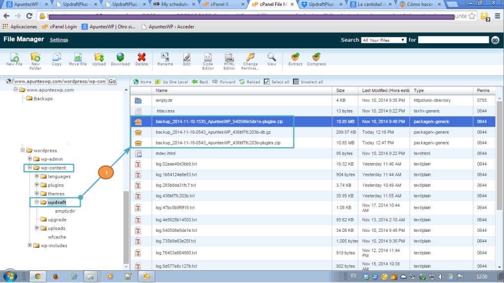 Copia seguridad base datos wordpress. Comprobando donde se guardan los archivos de copia de seguridad en cpanel