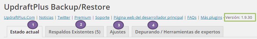 Hacer copia seguridad WordPress. Pestañas de UpdraftPlus