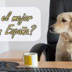 Cuál es el mejor hosting de España