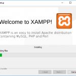 Instalando XAMPP