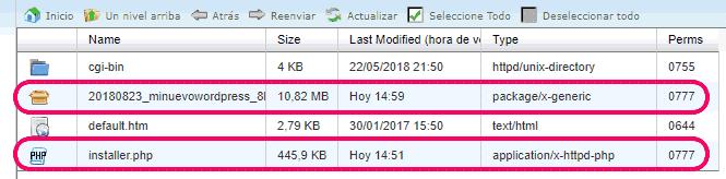 Archivos de WordPress subidos al hosting