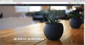 Prueba exitosa de WordPress migrado de local a servidor remoto