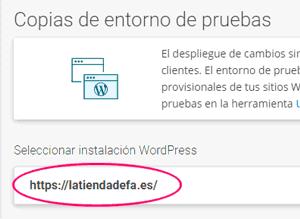 Entorno de pruebas staging elegir el WordPress