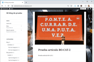 Vista del WordPress.com